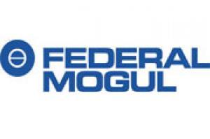 cliente Federal Mogul